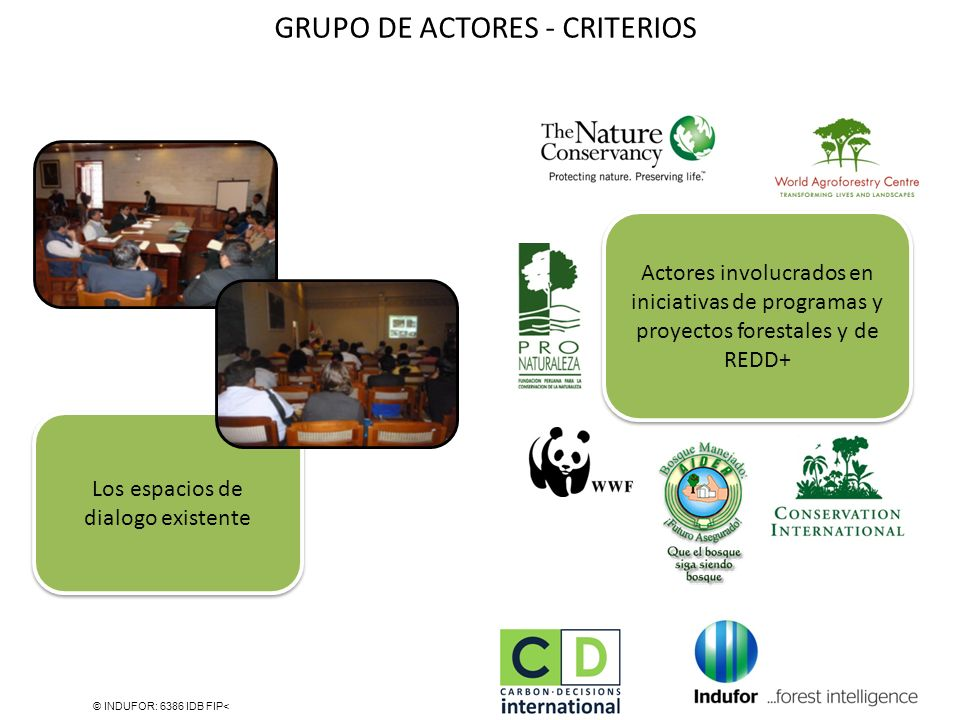 GRUPO DE ACTORES - CRITERIOS