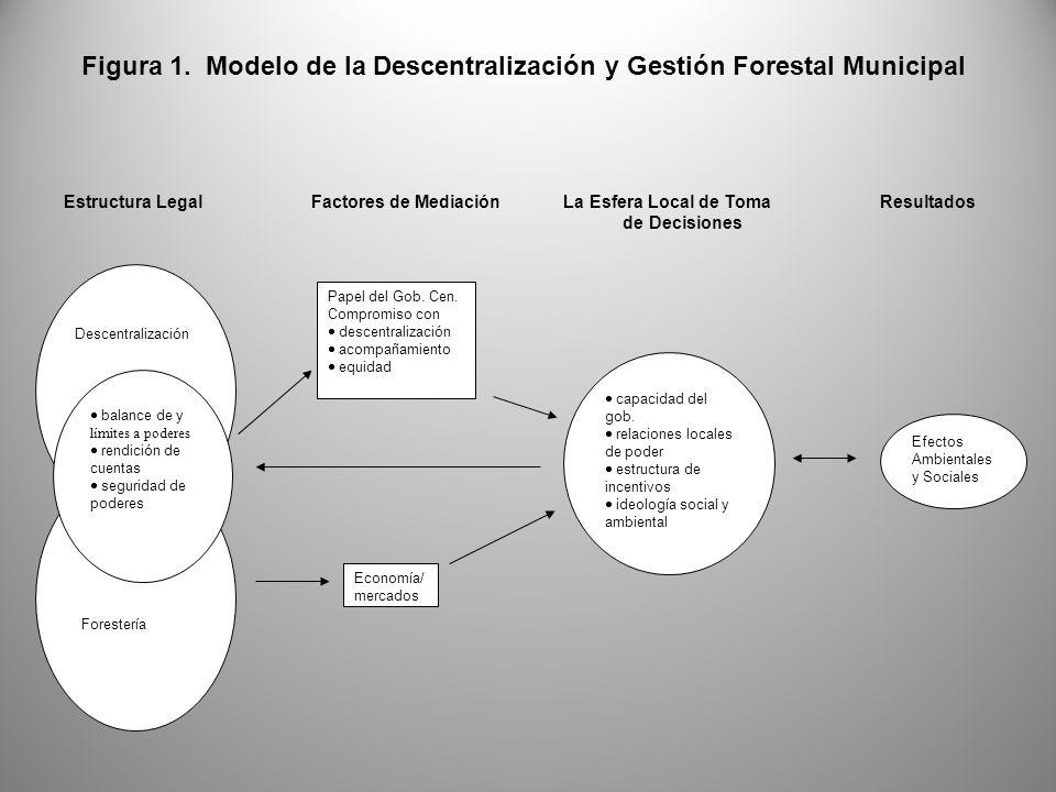 Figura 1. Modelo de la Descentralización y Gestión Forestal Municipal