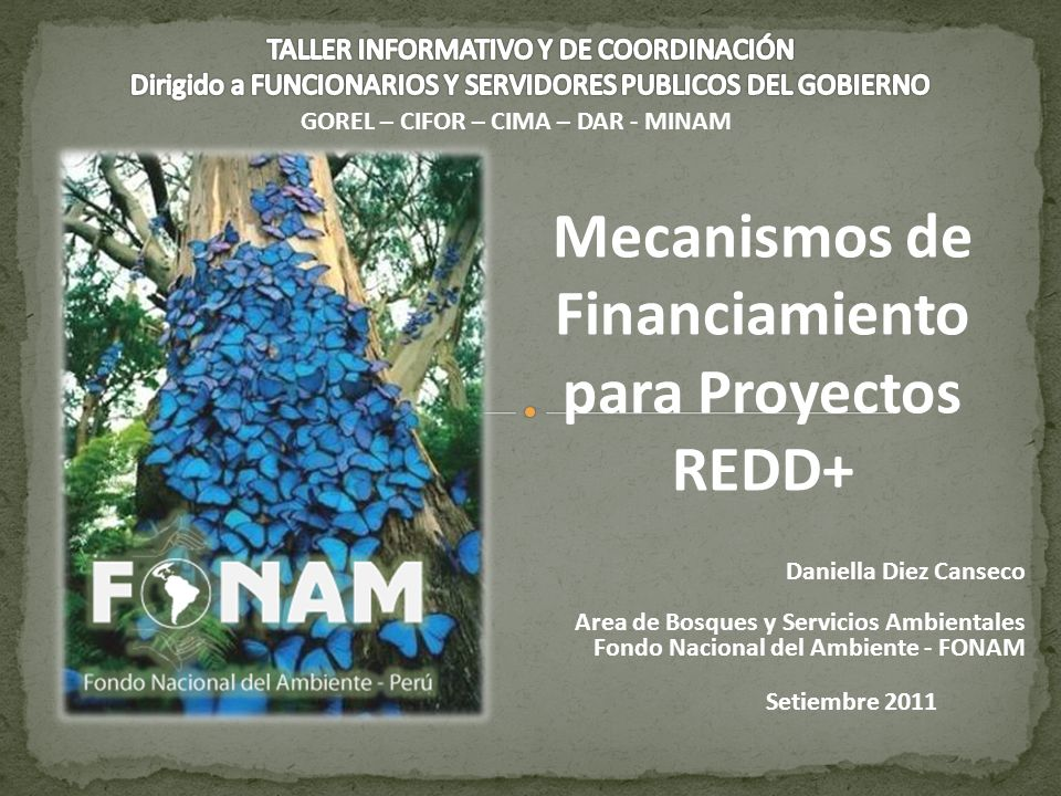 Mecanismos de Financiamiento para Proyectos REDD+