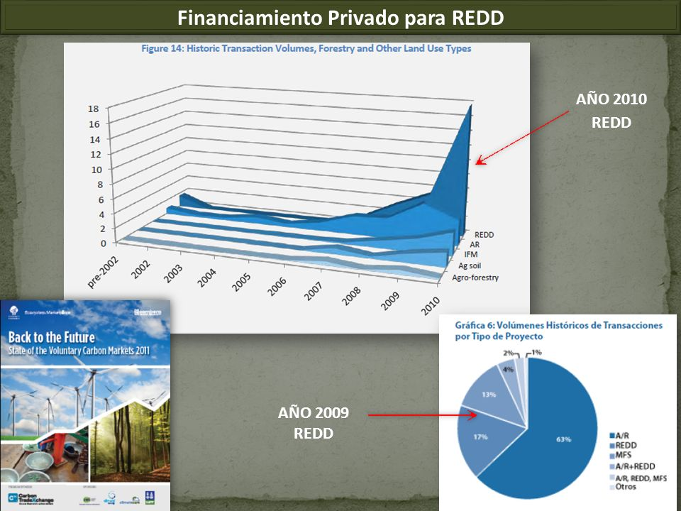 Financiamiento Privado para REDD