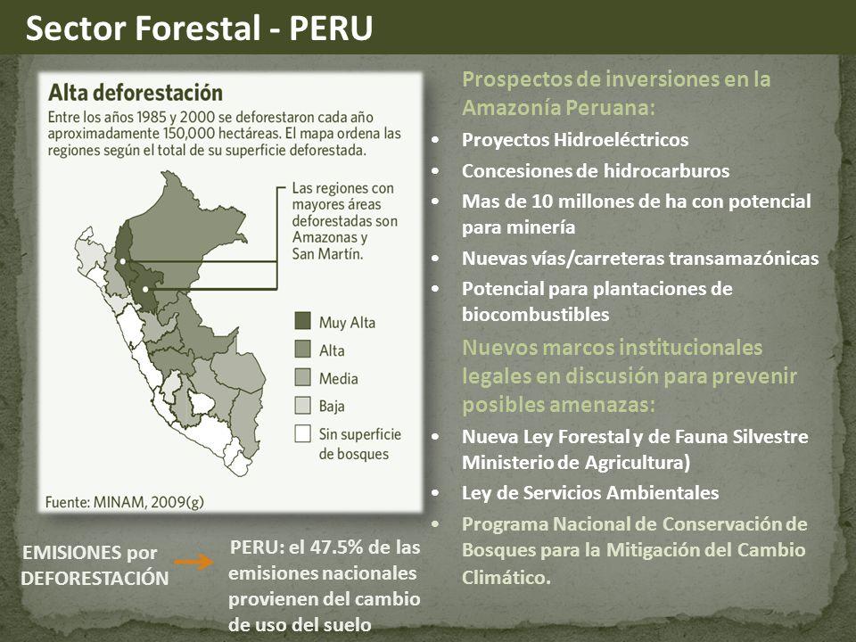 Sector Forestal - PERU Prospectos de inversiones en la Amazonía Peruana: Proyectos Hidroeléctricos.
