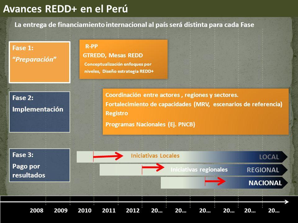 Avances REDD+ en el Perú
