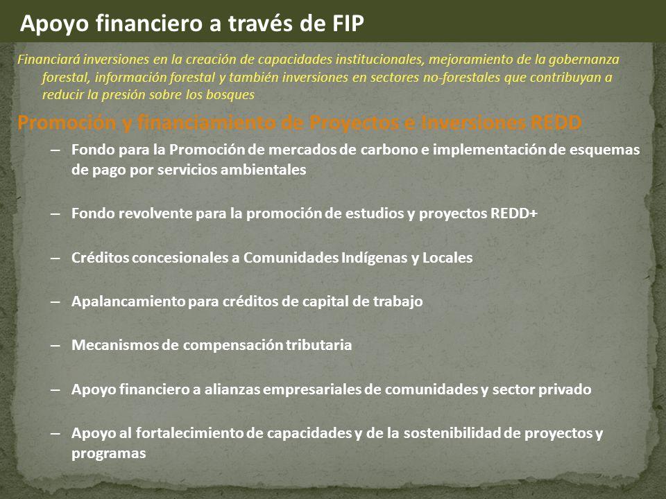 Apoyo financiero a través de FIP
