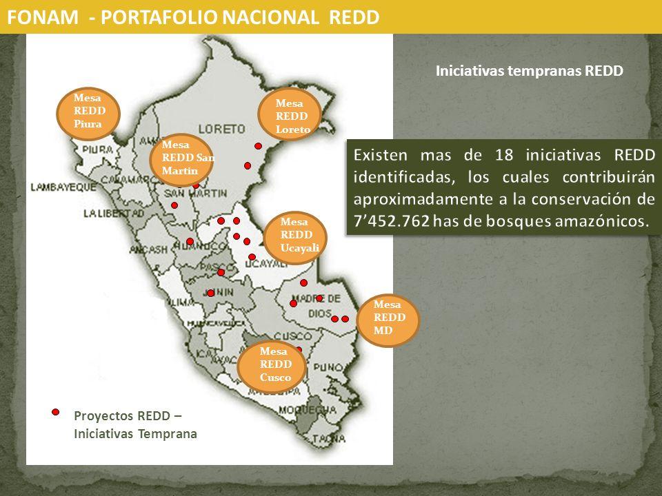 FONAM - PORTAFOLIO NACIONAL REDD