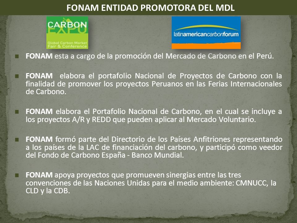 FONAM ENTIDAD PROMOTORA DEL MDL