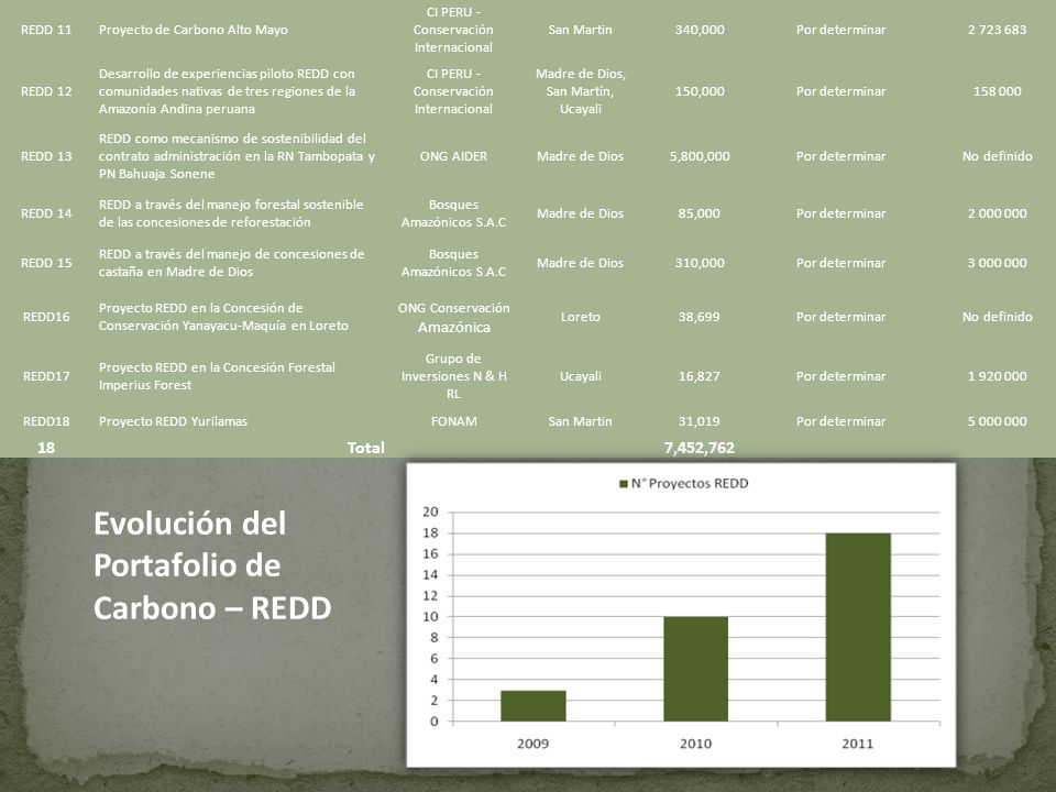 Evolución del Portafolio de Carbono – REDD