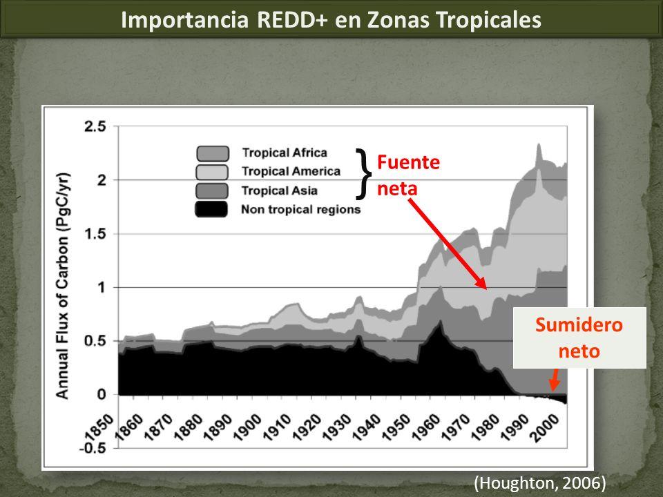 Importancia REDD+ en Zonas Tropicales