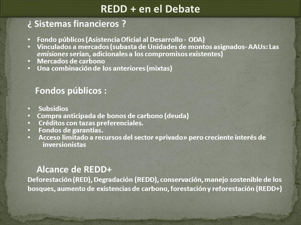 REDD + en el Debate ¿ Sistemas financieros Fondos públicos :