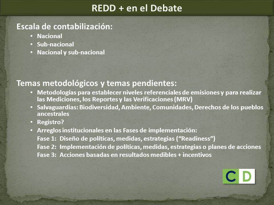 REDD + en el Debate Escala de contabilización:
