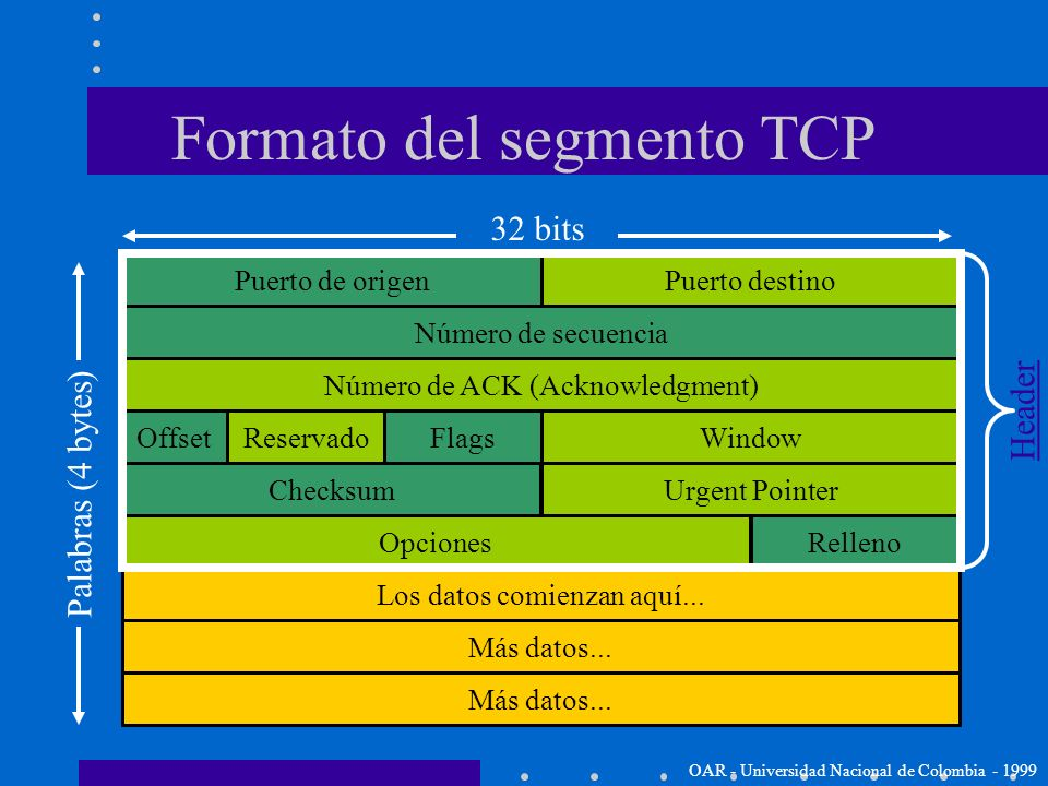 Formato del segmento TCP
