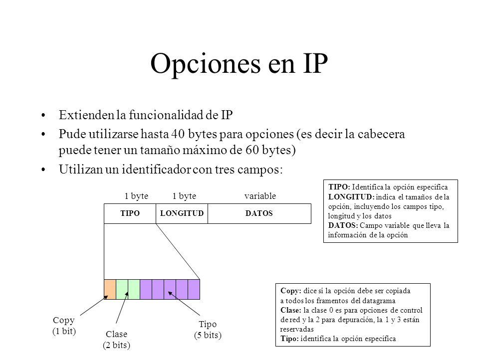 Opciones en IP Extienden la funcionalidad de IP