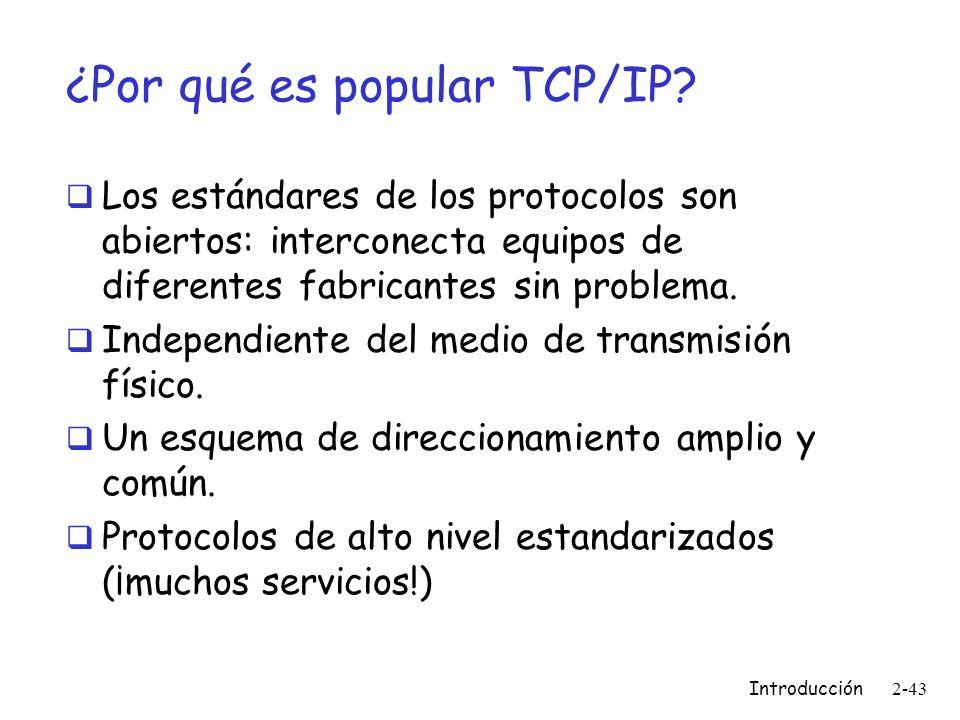 ¿Por qué es popular TCP/IP