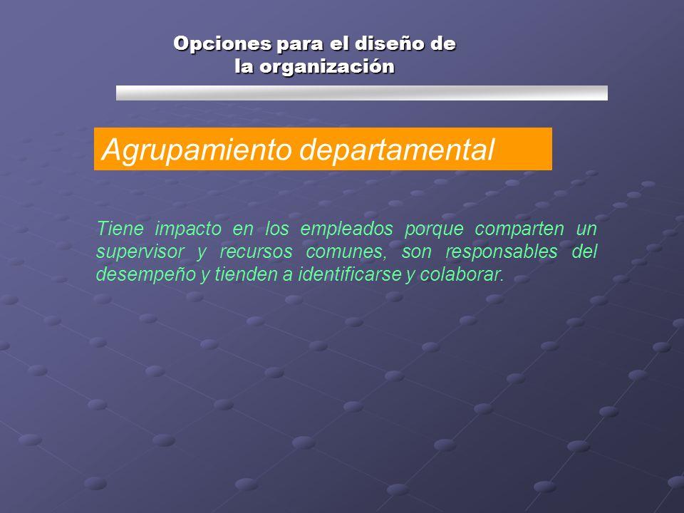 Opciones para el diseño de la organización