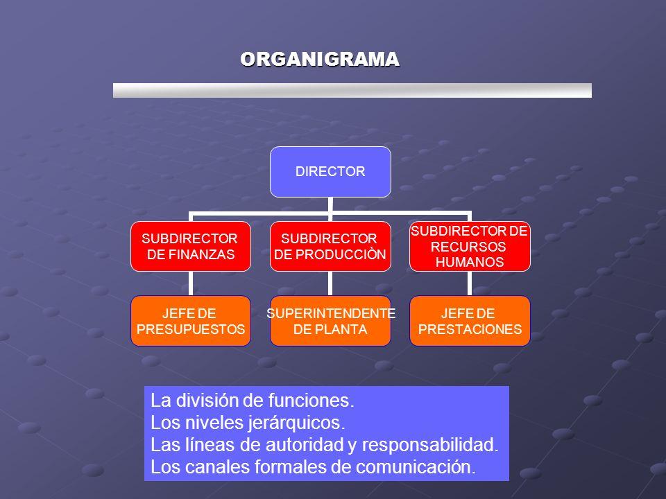 ORGANIGRAMA La división de funciones. Los niveles jerárquicos. Las líneas de autoridad y responsabilidad.