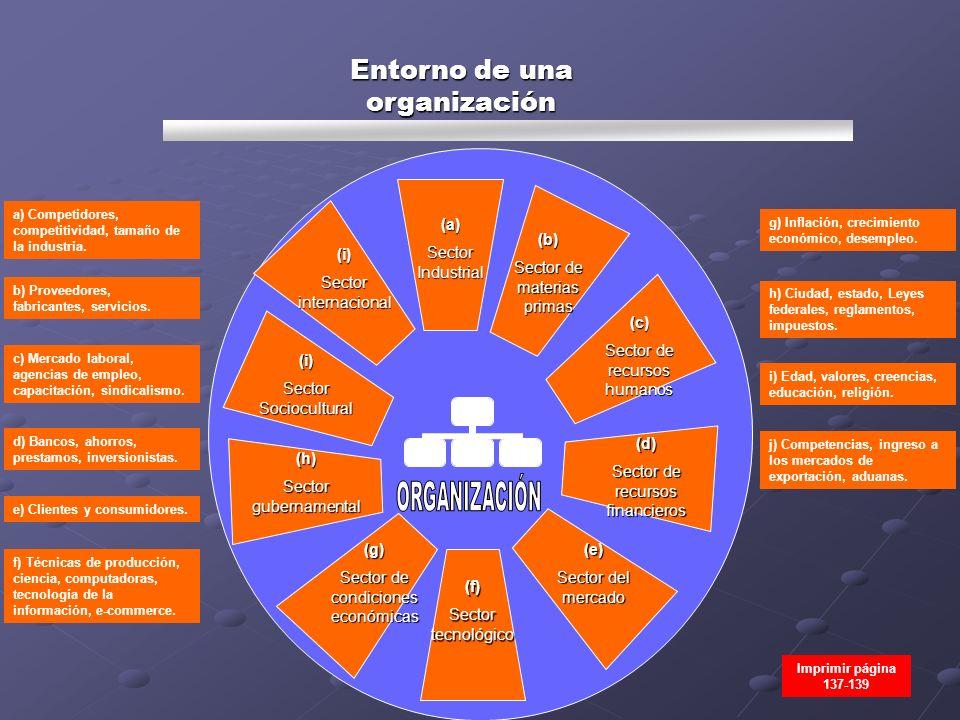 Entorno de una organización