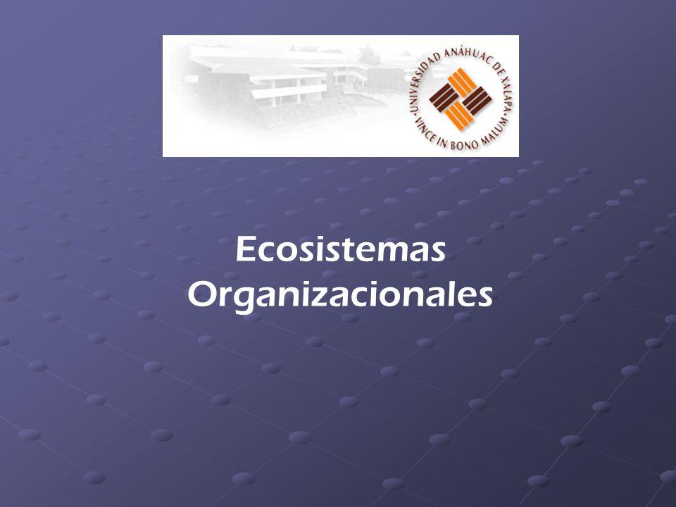 Ecosistemas Organizacionales