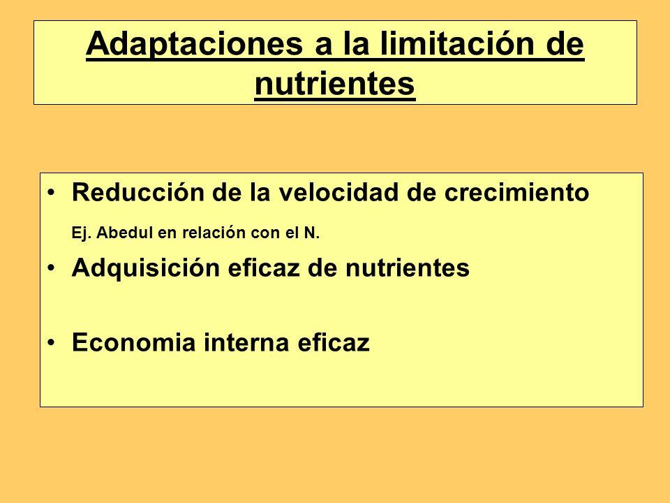 Adaptaciones a la limitación de nutrientes