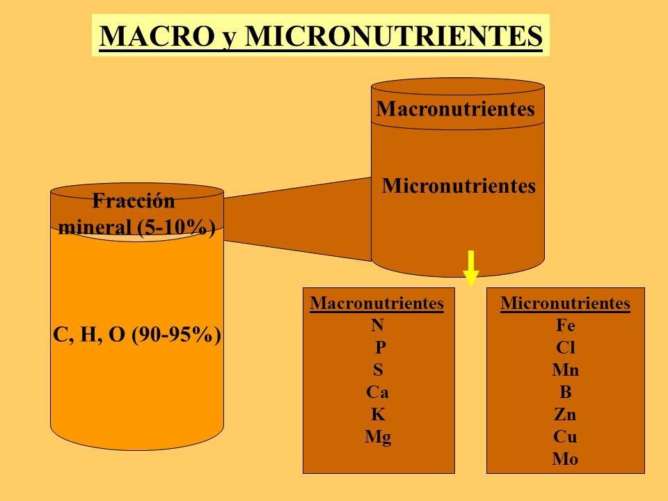 MACRO y MICRONUTRIENTES