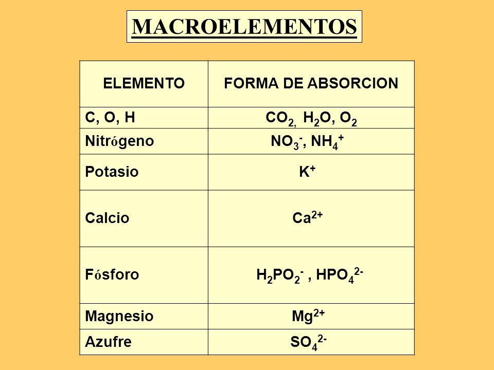 MACROELEMENTOS ELEMENTO FORMA DE ABSORCION C, O, H CO2, H2O, O2