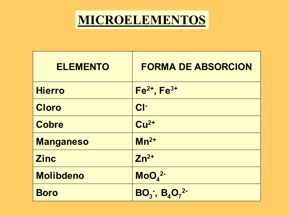 MICROELEMENTOS ELEMENTO FORMA DE ABSORCION Hierro Fe2+, Fe3+ Cloro Cl-
