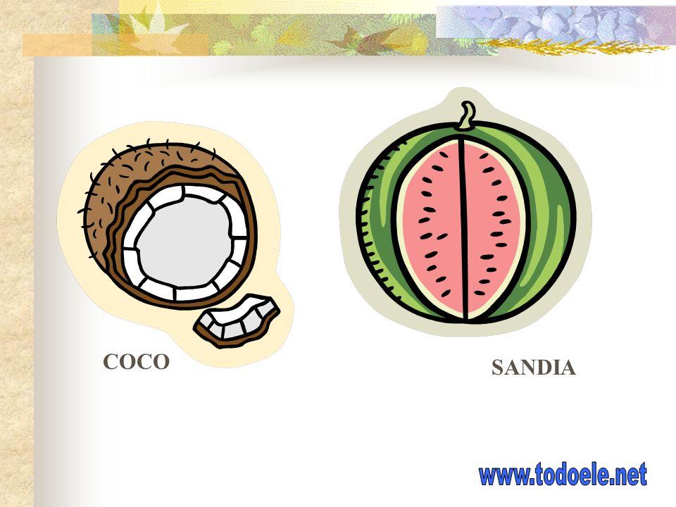 COCO SANDIA