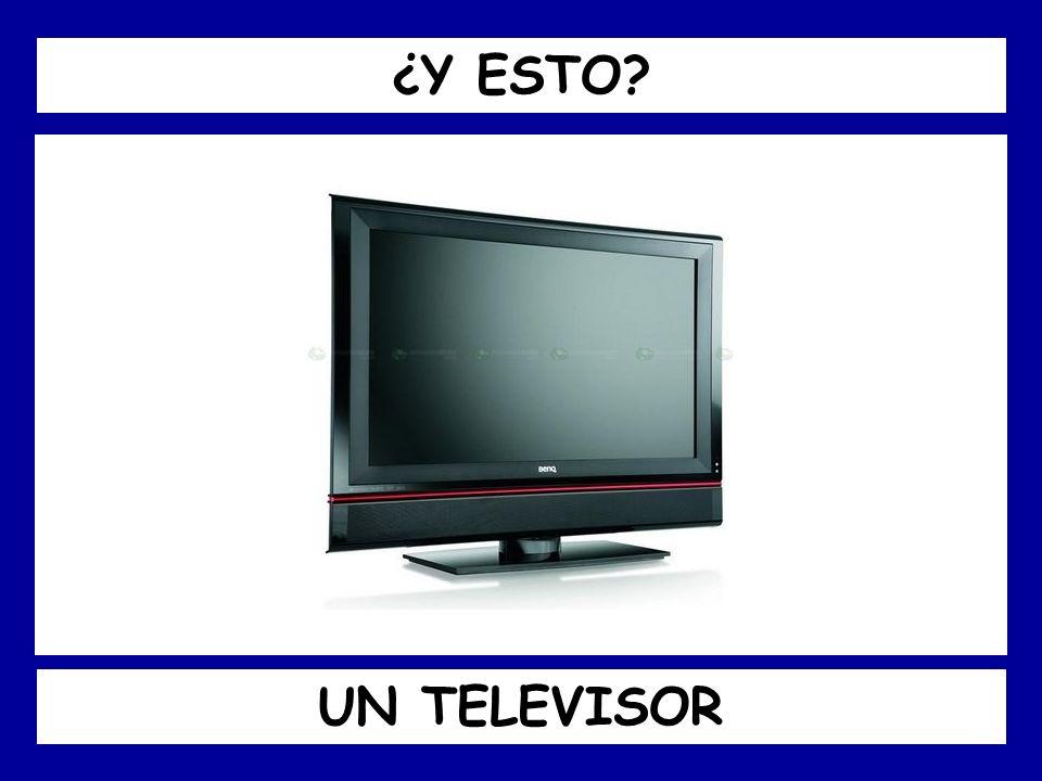 ¿Y ESTO UN TELEVISOR