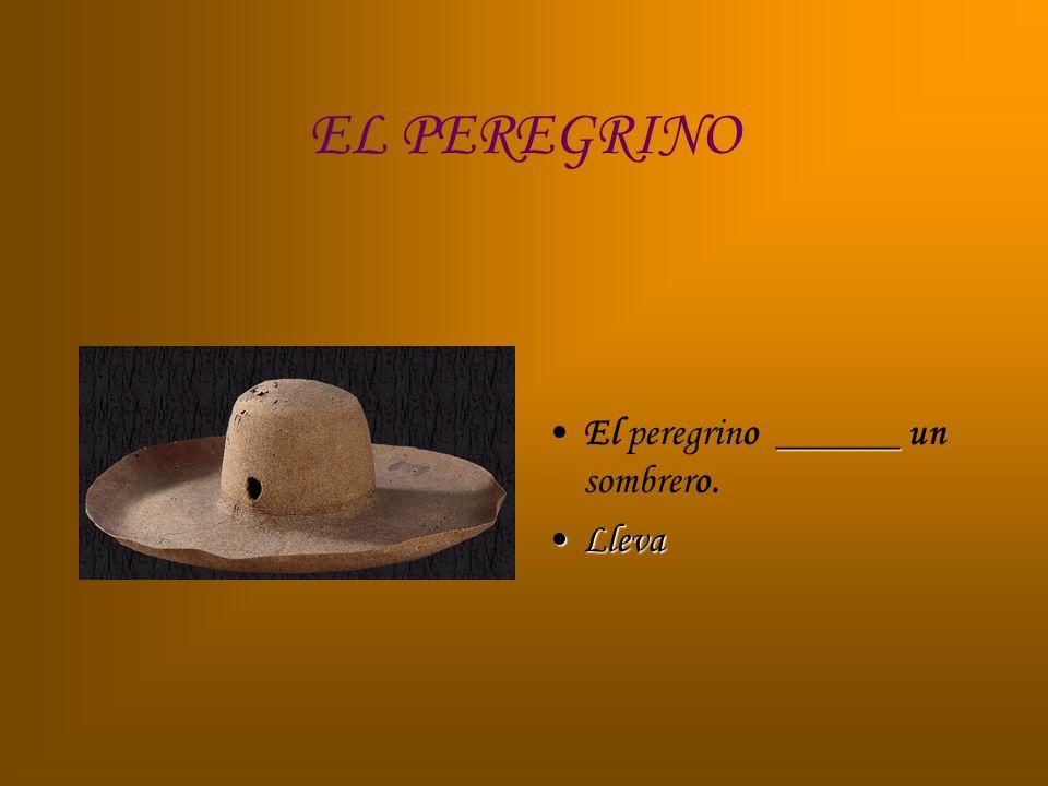 EL PEREGRINO El peregrino ______ un sombrero. Lleva