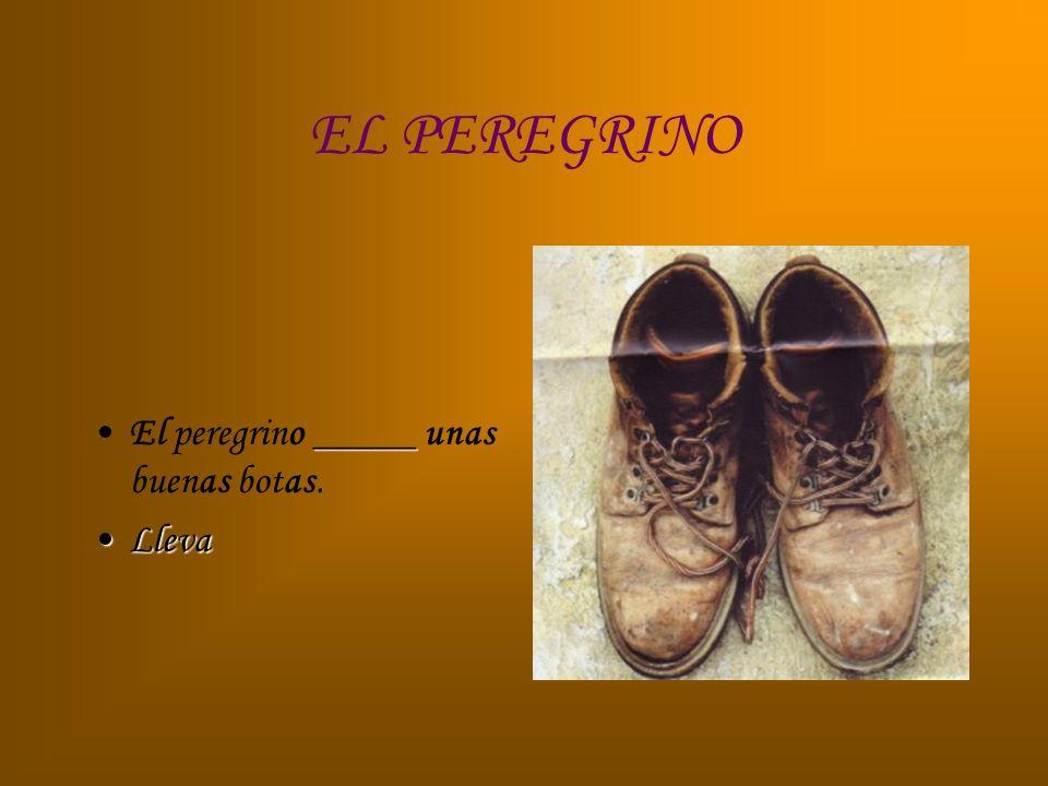 EL PEREGRINO El peregrino _____ unas buenas botas. Lleva