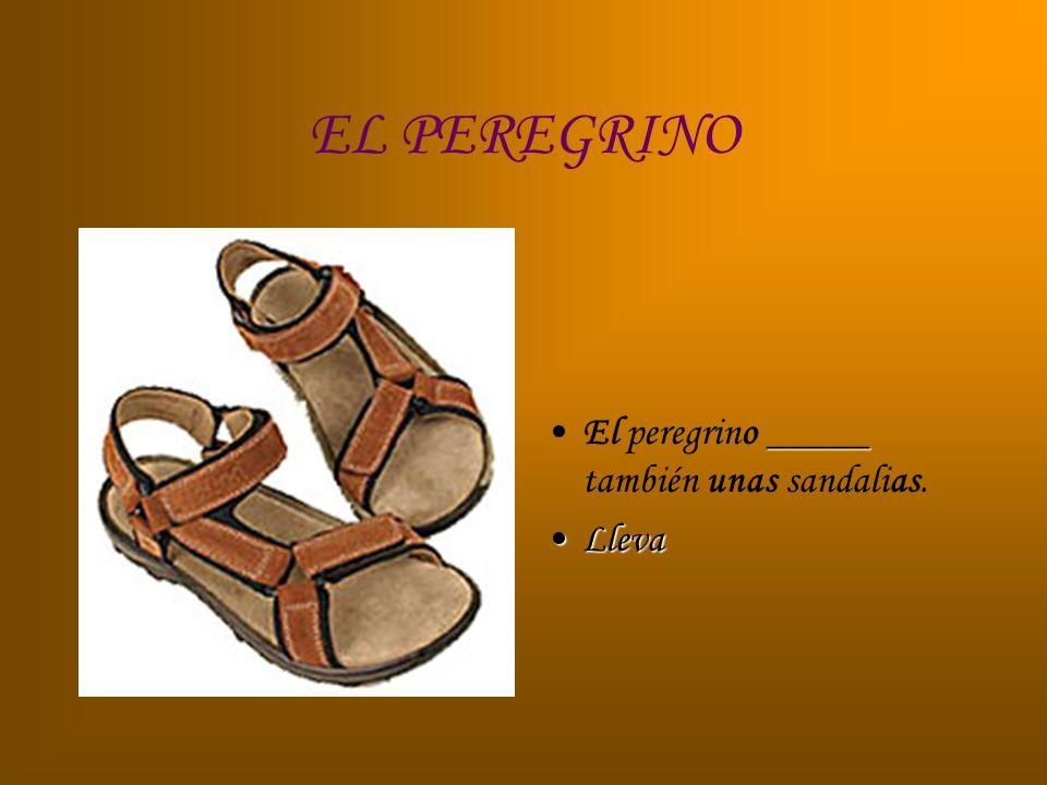 EL PEREGRINO El peregrino _____ también unas sandalias. Lleva