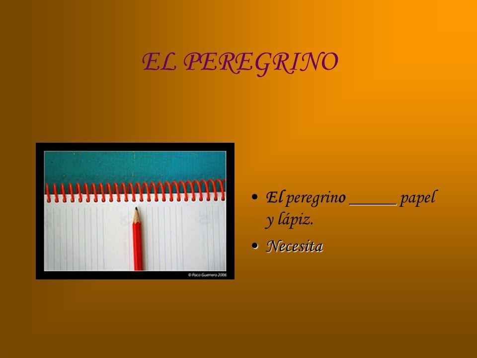 EL PEREGRINO El peregrino _____ papel y lápiz. Necesita