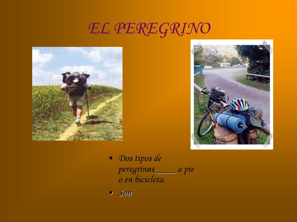 EL PEREGRINO Dos tipos de peregrinos ____ a pie o en bicicleta. Son