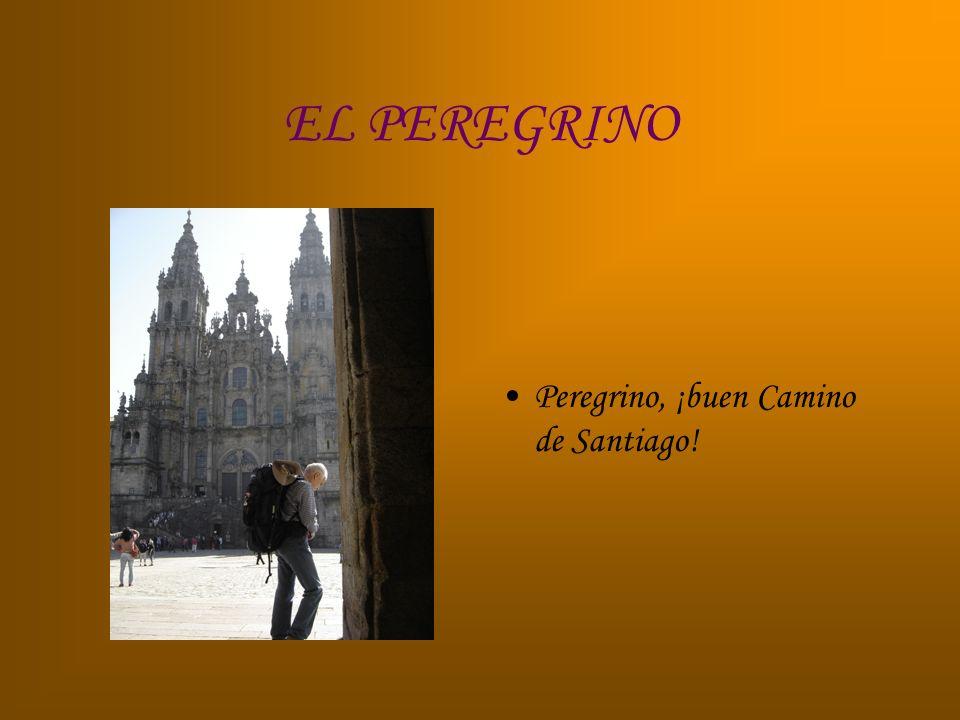EL PEREGRINO Peregrino, ¡buen Camino de Santiago!