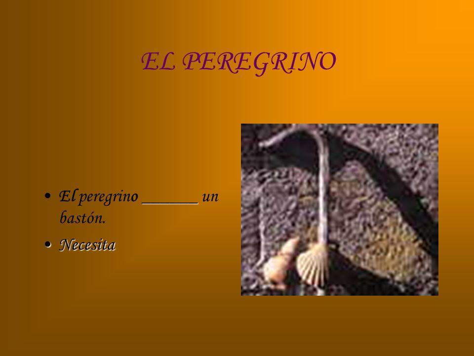 EL PEREGRINO El peregrino ______ un bastón. Necesita