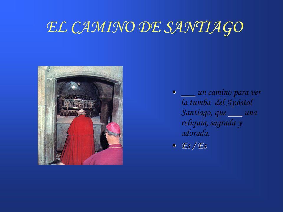 EL CAMINO DE SANTIAGO ___ un camino para ver la tumba del Apóstol Santiago, que ___ una reliquia, sagrada y adorada.