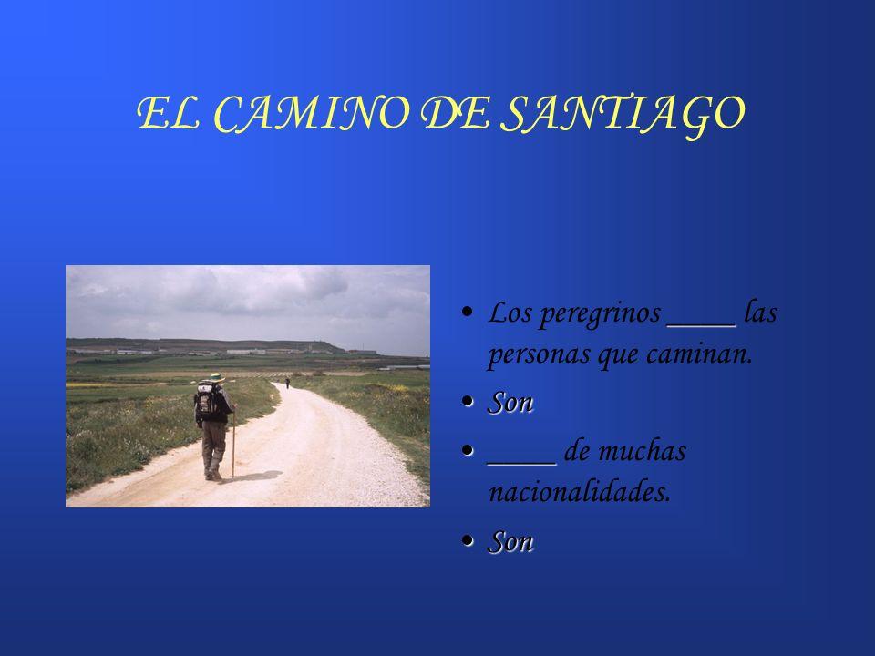 EL CAMINO DE SANTIAGO Los peregrinos ____ las personas que caminan.
