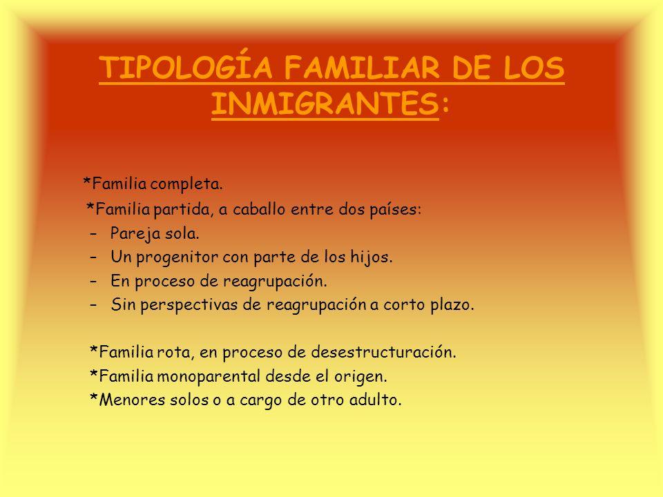 TIPOLOGÍA FAMILIAR DE LOS INMIGRANTES: