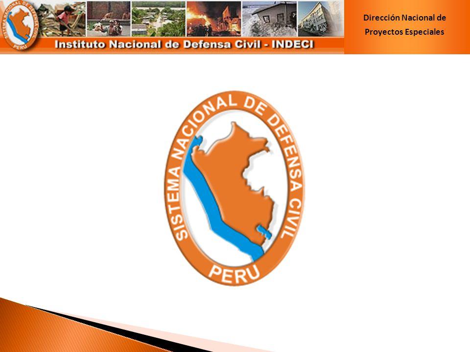 Dirección Nacional de Proyectos Especiales