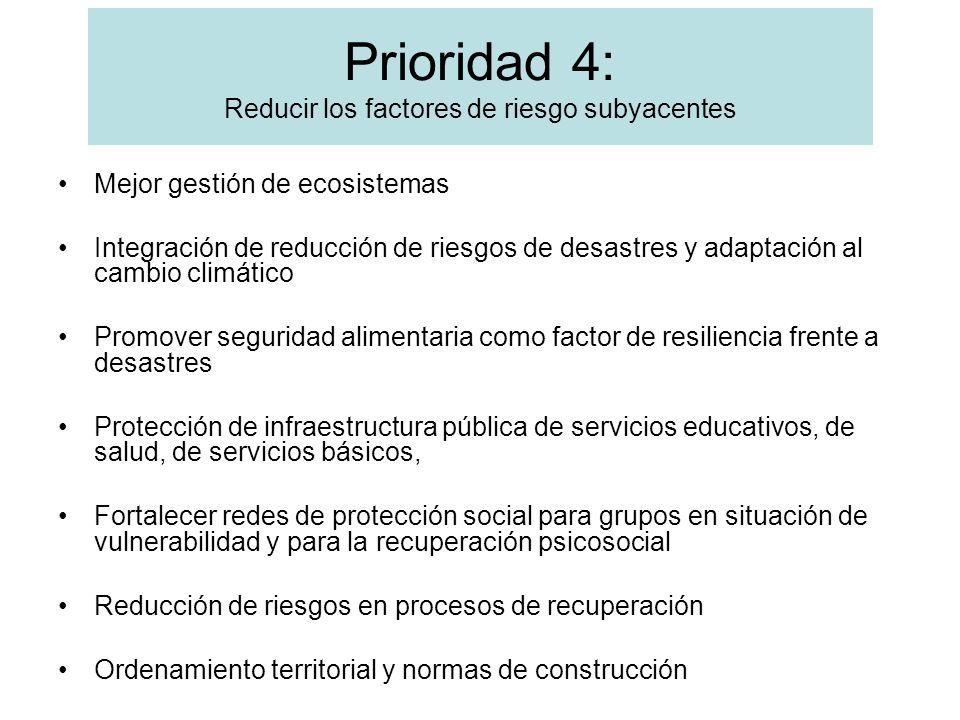 Prioridad 4: Reducir los factores de riesgo subyacentes