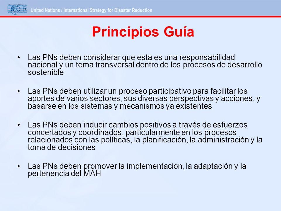 Principios Guía