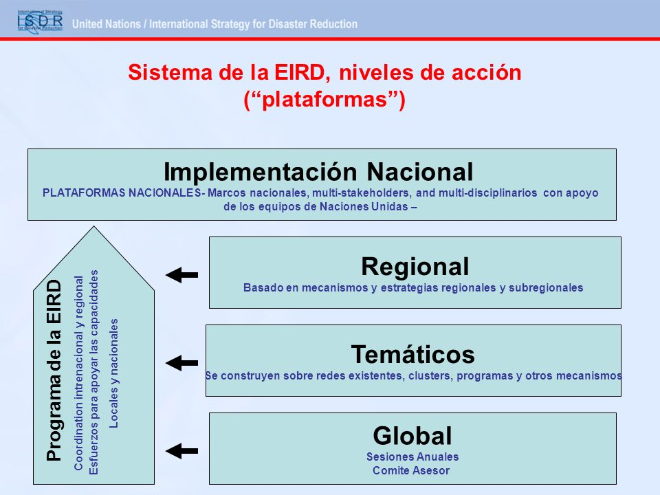 Sistema de la EIRD, niveles de acción ( plataformas )