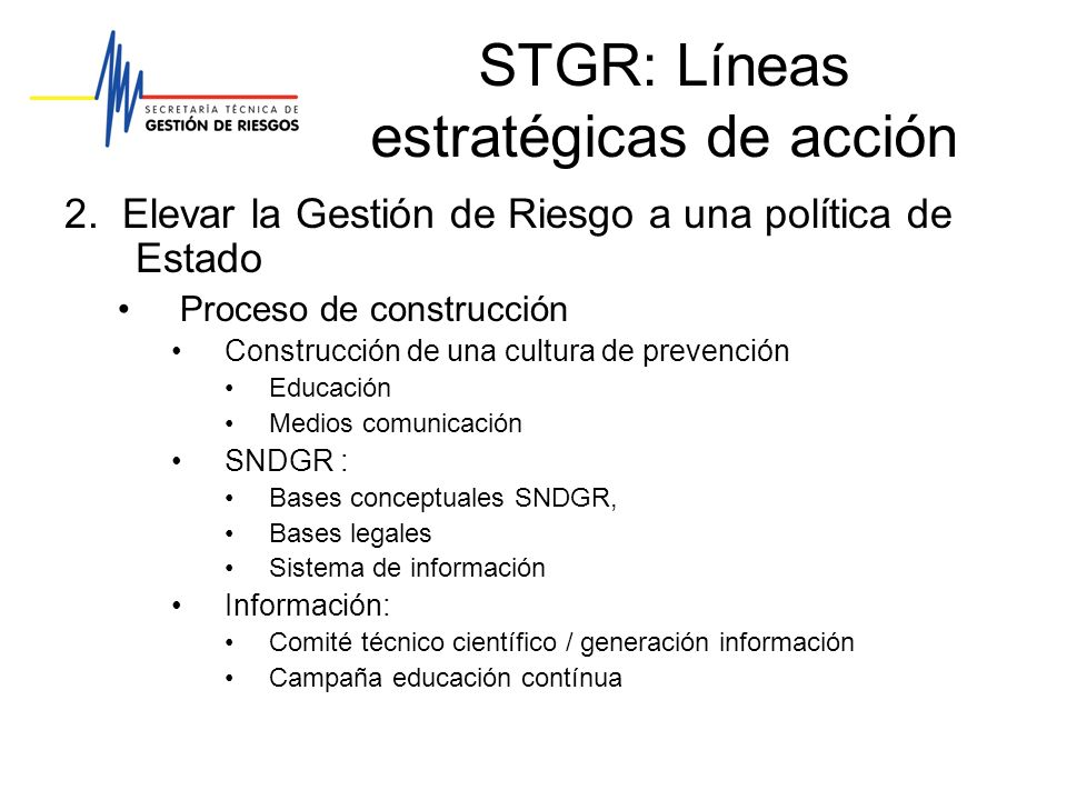 STGR: Líneas estratégicas de acción
