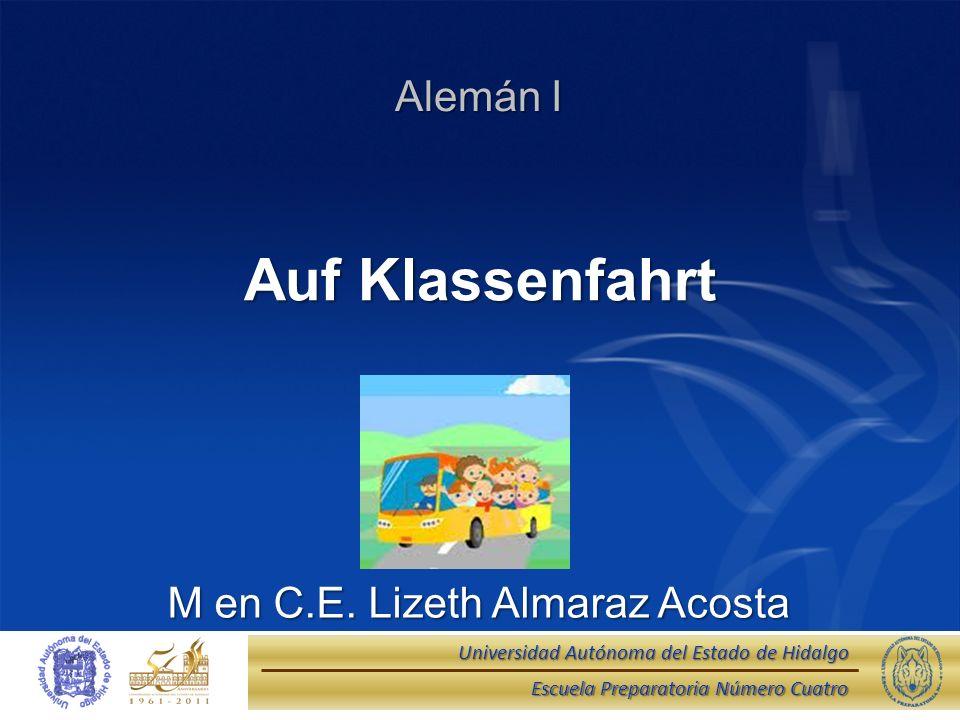 M en C.E. Lizeth Almaraz Acosta
