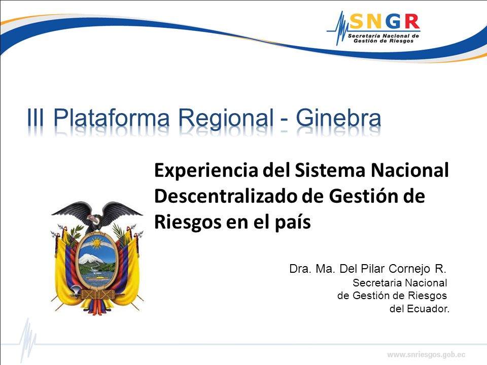 III Plataforma Regional - Ginebra