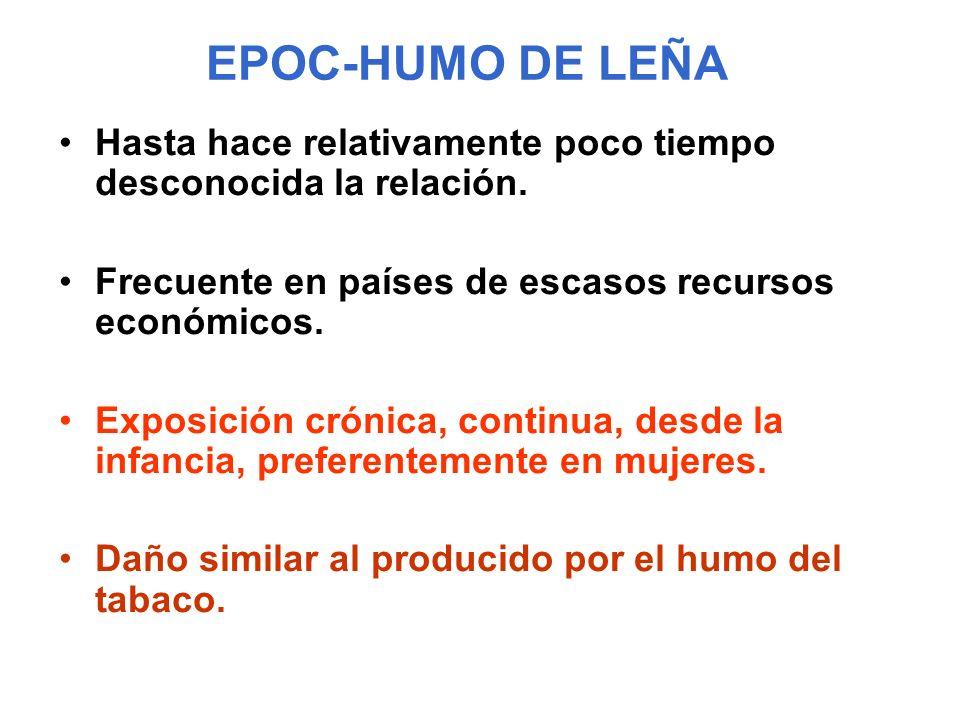 EPOC-HUMO DE LEÑA Hasta hace relativamente poco tiempo desconocida la relación. Frecuente en países de escasos recursos económicos.