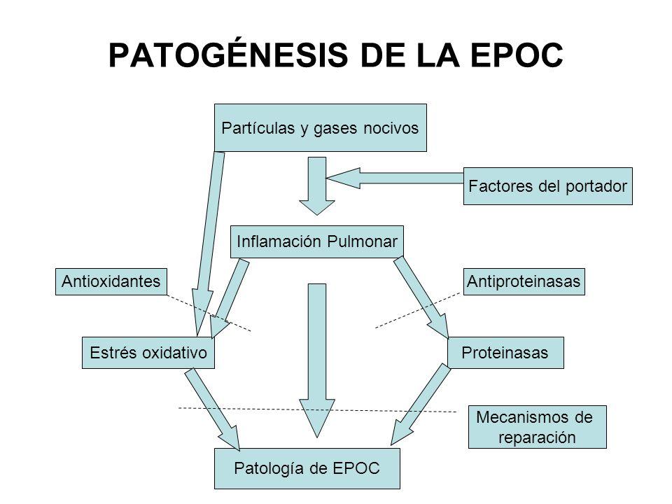 Partículas y gases nocivos