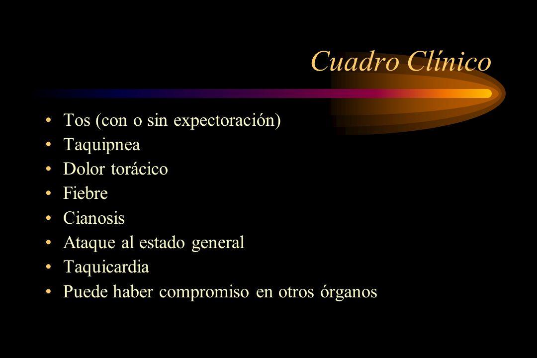 Cuadro Clínico Tos (con o sin expectoración) Taquipnea Dolor torácico