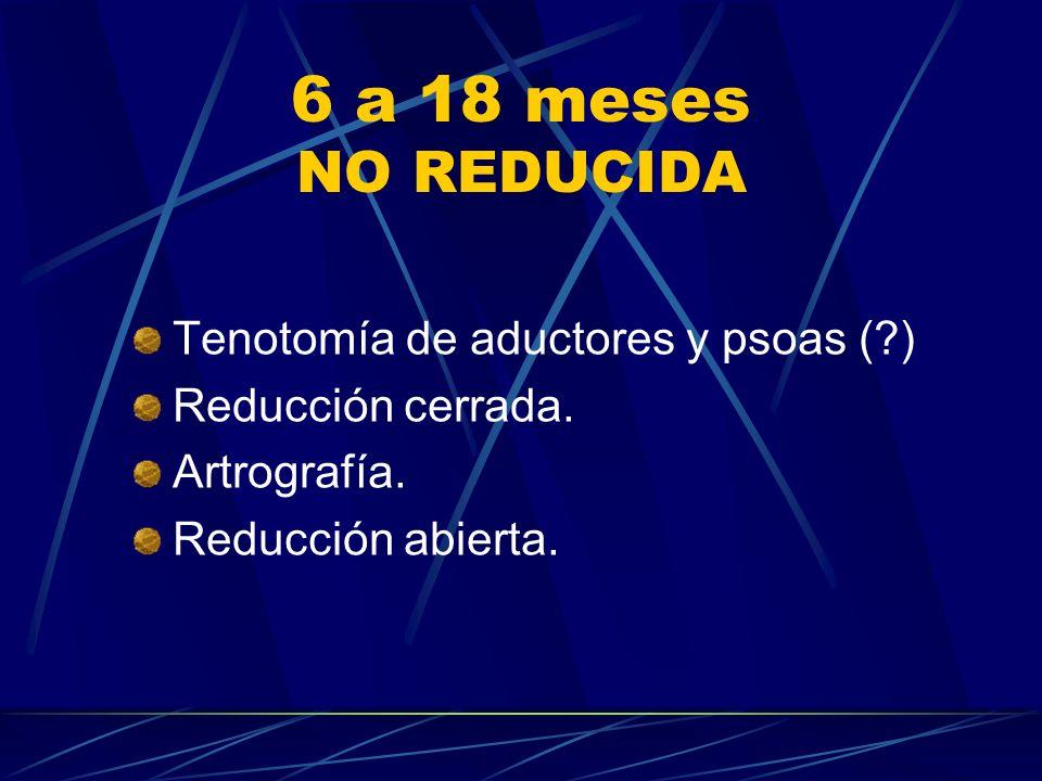 6 a 18 meses NO REDUCIDA Tenotomía de aductores y psoas ( )