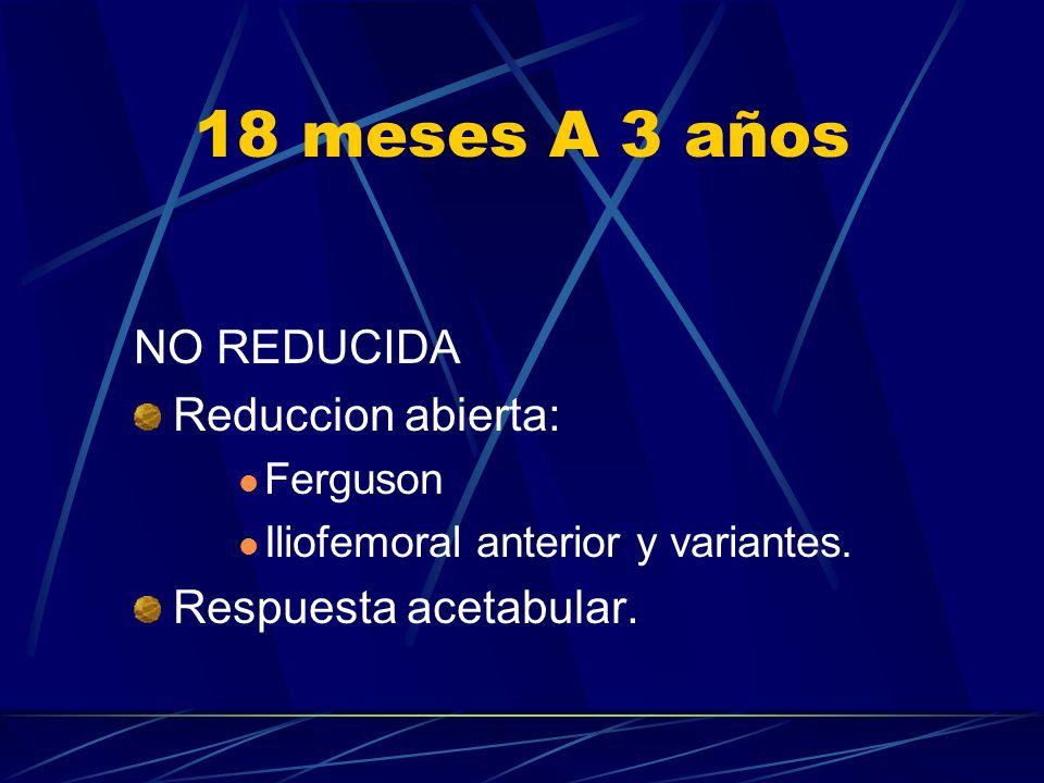 18 meses A 3 años NO REDUCIDA Reduccion abierta: Respuesta acetabular.