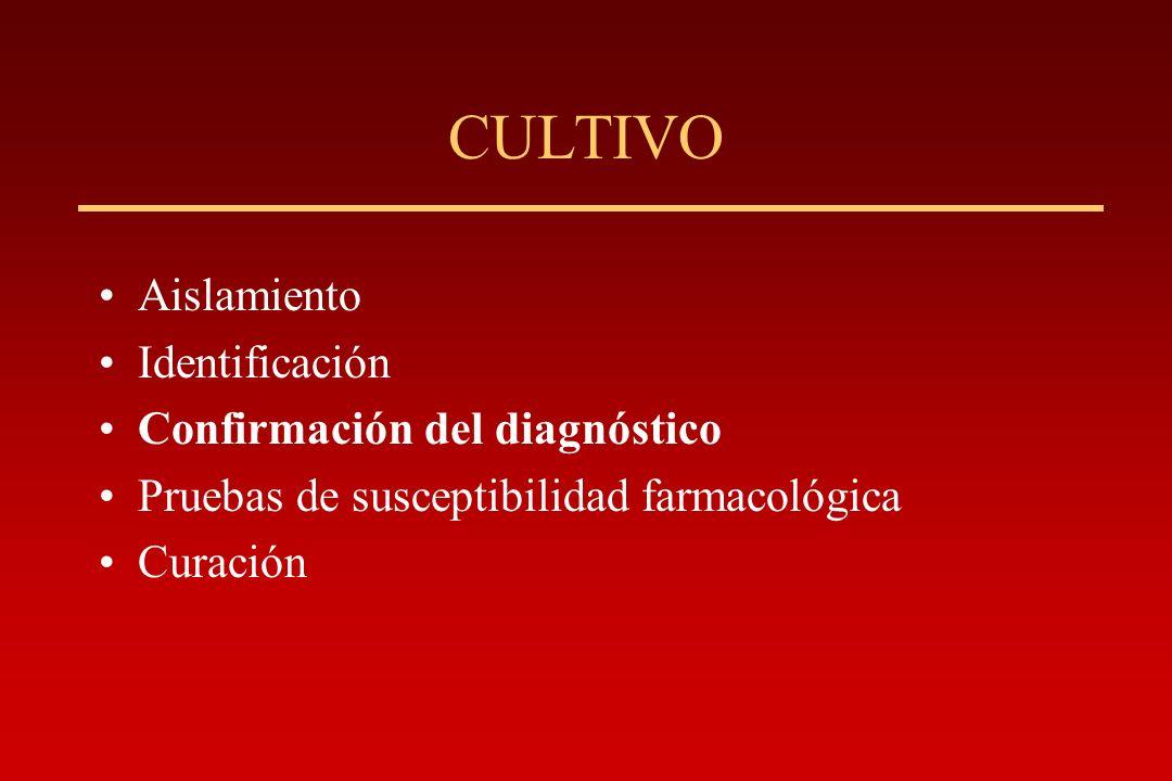 CULTIVO Aislamiento Identificación Confirmación del diagnóstico