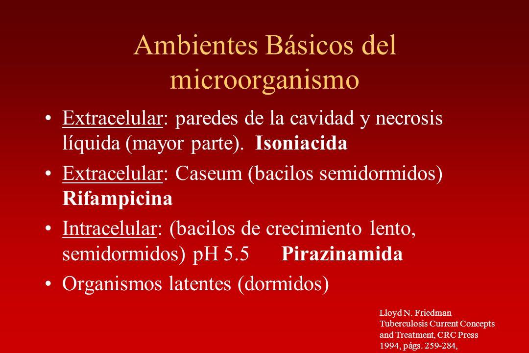Ambientes Básicos del microorganismo